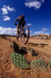 All Canada Photos (F1 Online) - Off road, Wilderness, Mountain bike, Riding