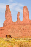 Andreas Geh (F1 Online) - Horse grazing in front of natural columns, Monument Valley, Utah, USA