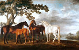 George Townley Stubbs - Mares and fillies