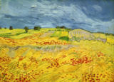 Vincent van Gogh - Fields with Blooming Poppies